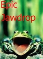 Epic jawdrop - frogs photo