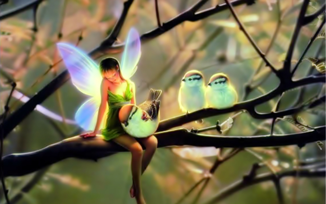 Fairy&Birds