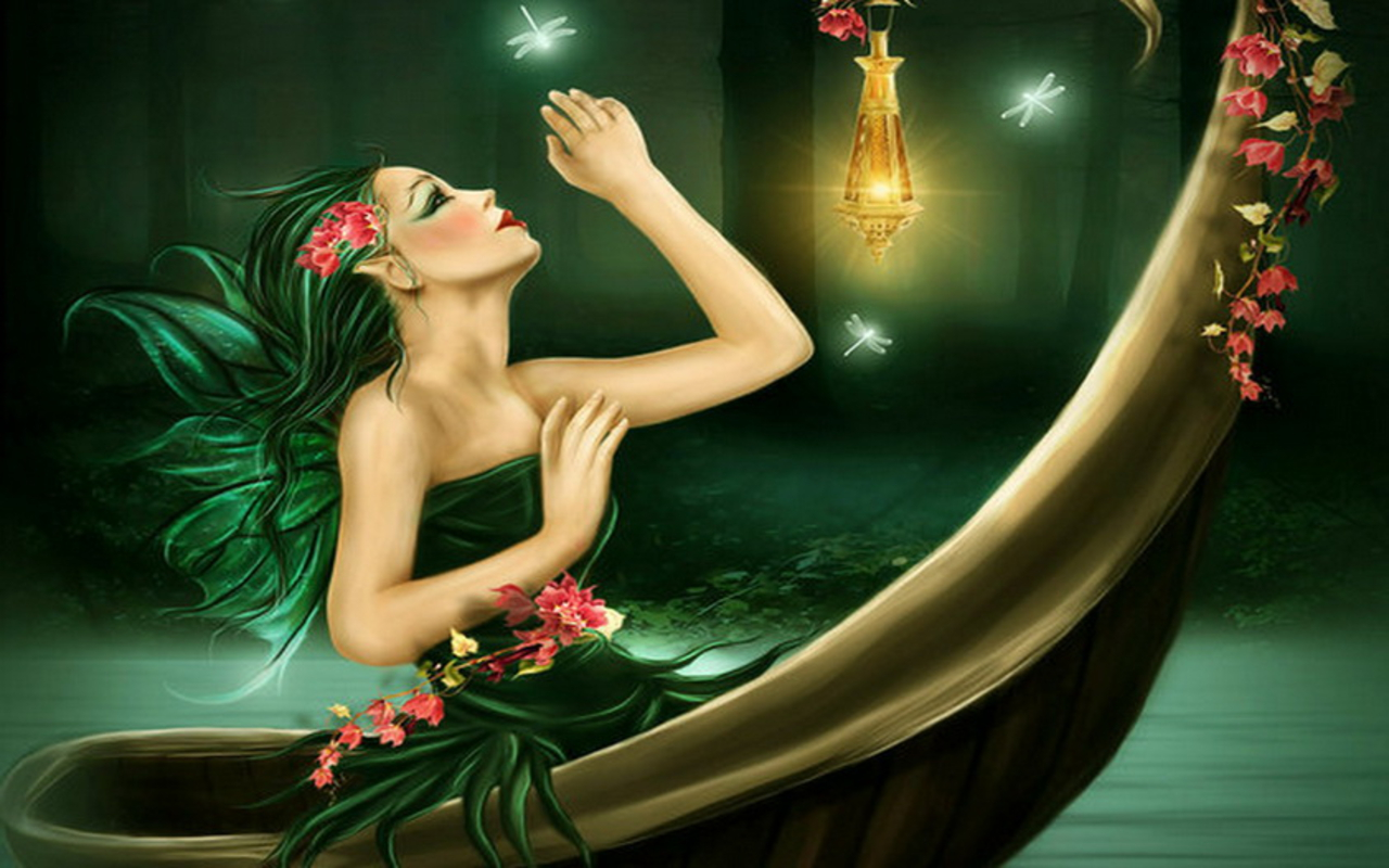 fairies images fairylights hd wallpaper and background