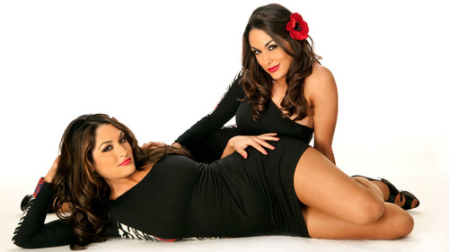 diva wwe wallpaper called Farewell To the Bella Twins