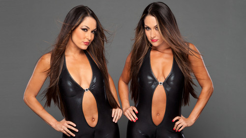 Farewell to the Bella Twins - wwe Photo