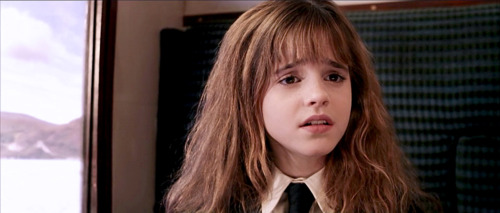hermione granger wallpaper containing a portrait titled Hermione Philosopher's stone
