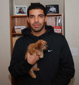 His soft side - aubrey-drake-graham photo