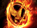 Hunger Games Symbol