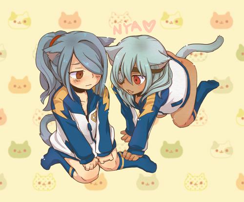 Kazemaru and Sakuma... NYAN!