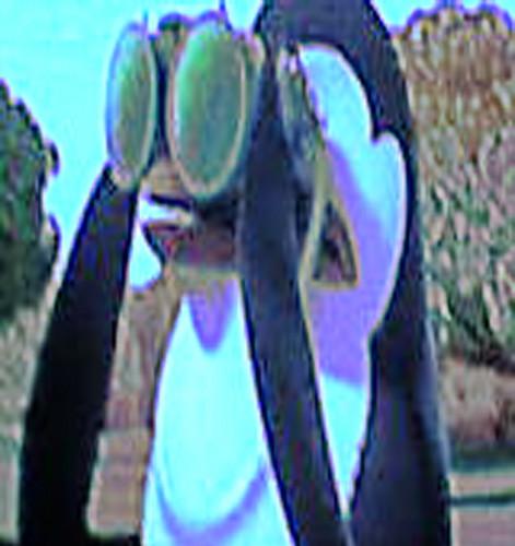 Kowalski With Binoculars