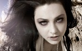 Lee - amy-lee wallpaper