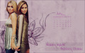 mary-kate-and-ashley-olsen - Mary Kate and Ashley Olsen wallpaper