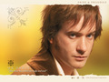 Mr. Darcy - matthew-macfadyen wallpaper