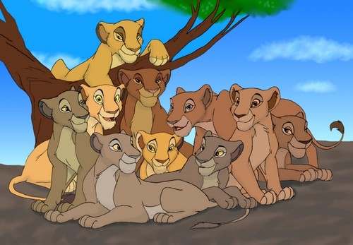 the lion king wallpaper probably with anime called Mufasa's pride