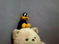 My Addictness brought me at this point XD (Daffy Duck stuff toy) - penelope3six photo