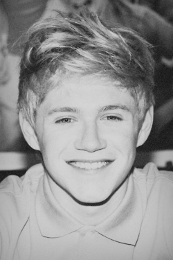 Niall Horan fond d'écran probably containing a portrait titled Niall Horan - Black and White