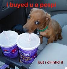 Pepsi Dog