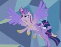 Princess Cadance Flying - twilight-sparkle-and-princess-cadance photo