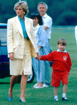 Princess Diana and her Sons 바탕화면 probably containing a 창구, 개찰 구 called Princess Diana and the Princes