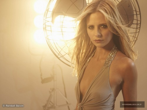 Sarah Michelle Gellar wallpaper probably with a cocktail dress, a bustier, and attractiveness called R Slavin 2008