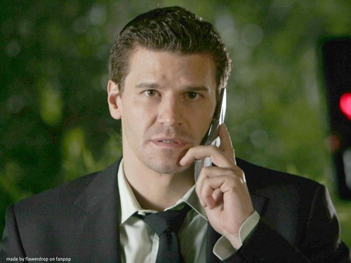 Seeley Booth wallpaper containing a business suit and a cleaver called Seeley Booth wallpaper