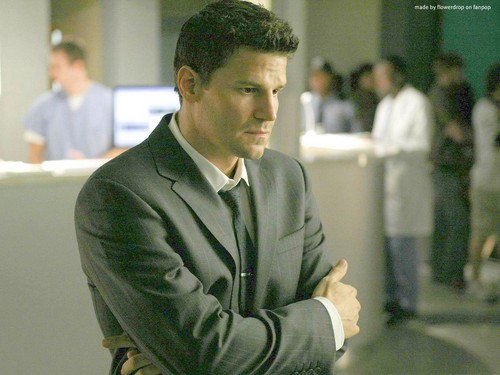 Seeley Booth پیپر وال containing a business suit and a suit entitled Seeley Booth پیپر وال