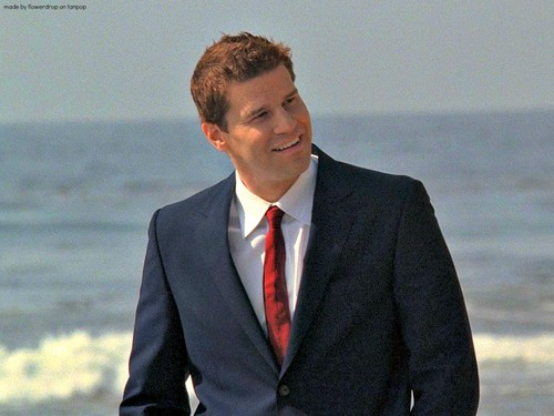 Seeley Booth দেওয়ালপত্র with a business suit, a suit, and a double breasted suit titled Seeley Booth দেওয়ালপত্র