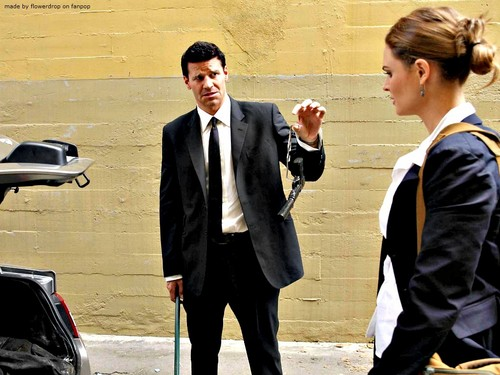 Seeley Booth پیپر وال with a business suit and a suit titled Seeley Booth پیپر وال