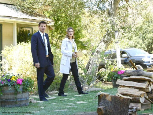 Seeley Booth 壁紙 containing a business suit called Seeley Booth 壁紙