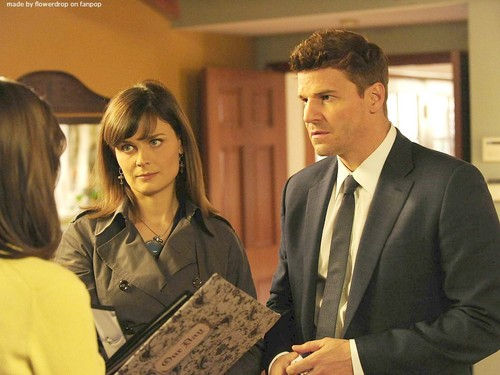 Seeley Booth achtergrond with a business suit and a suit called Seeley Booth achtergrond