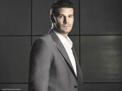 Seeley Booth achtergrond containing a business suit and a suit called Seeley Booth achtergrond