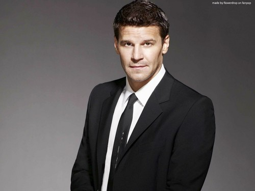 Seeley Booth wallpaper with a business suit and a suit titled Seeley Booth wallpaper