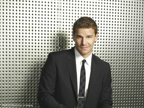 Seeley Booth wallpaper with a business suit, a suit, and a three piece suit called Seeley Booth wallpaper
