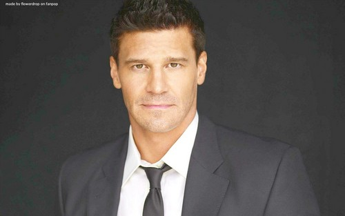 Seeley Booth wallpaper containing a business suit, a suit, and a double breasted suit entitled Seeley Booth wallpaper