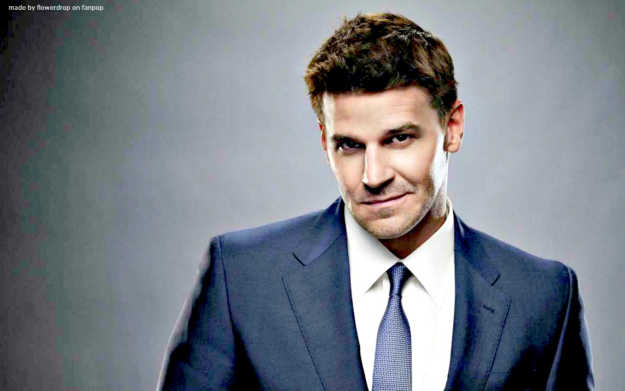 Seeley Booth 壁纸