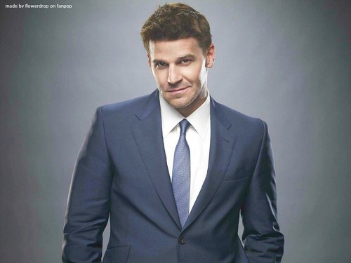Seeley Booth wallpaper with a business suit, a suit, and a single breasted suit called Seeley Booth wallpaper