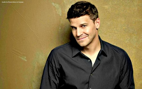 Seeley Booth wallpaper