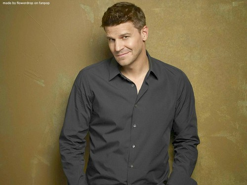 Seeley Booth wallpaper possibly containing a well dressed person entitled Seeley Booth wallpaper