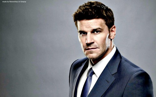 Seeley Booth achtergrond with a business suit and a suit titled Seeley Booth achtergrond