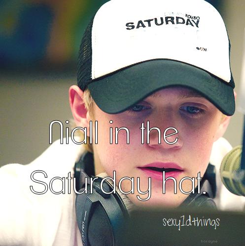 Sexy Niall Horan Things