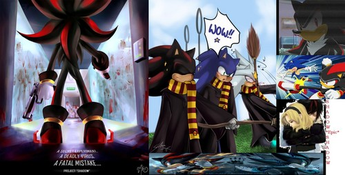 Shadow is EPIC! Proof** - shadow-the-hedgehog