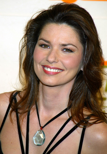 Shania Twain wallpaper probably containing a portrait titled Shania Twain