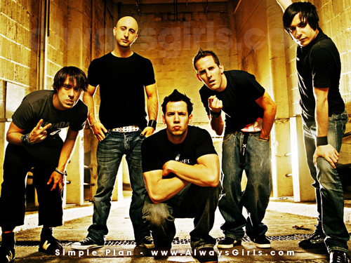 Simple Plan wallpaper containing a pacific sardine and an atlantic herring called Simple Plan