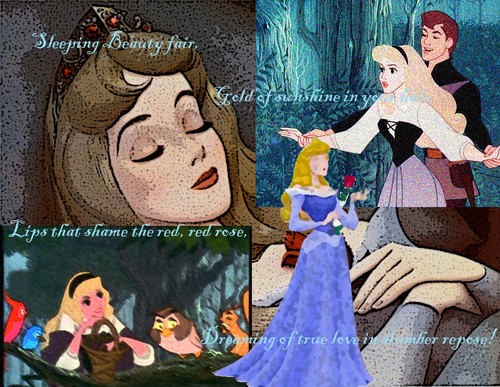Sleeping Beauty - disney-princess Fan Art