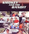Smokey and the Bandit - smokey-and-the-bandit fan art