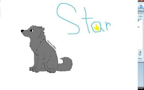 سٹار, ستارہ and Sky, Starlight and Fang's pups