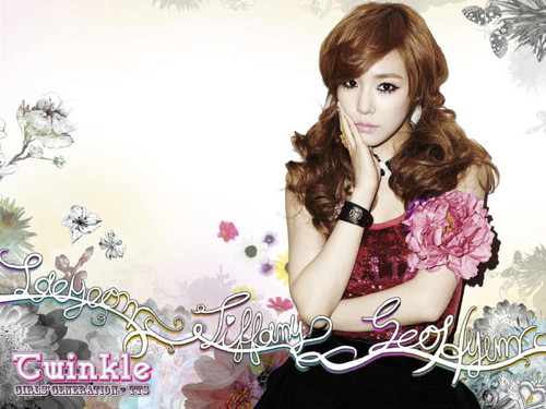 "TaeTiSeo ""Twinkle"" Digital Booklet - girls-generation-snsd Wallpaper"