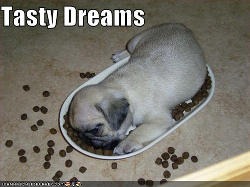 Pugs wallpaper titled Tasty dream X3