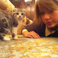 Taylor and her cat !
