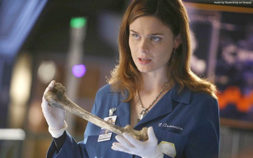 Temperance Brennan wallpaper