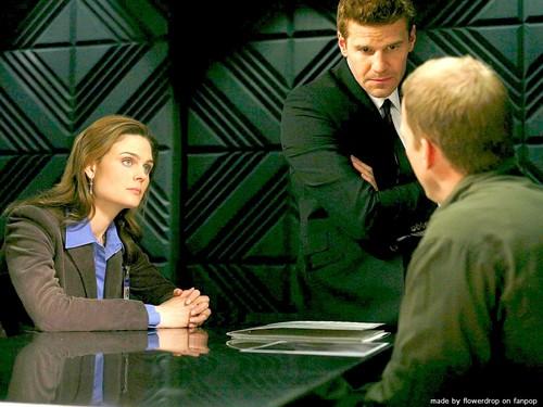Temperance Brennan wallpaper