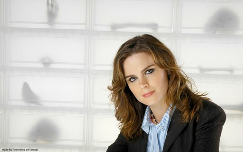 Temperance Brennan karatasi la kupamba ukuta containing a well dressed person and a business suit called Temperance Brennan karatasi la kupamba ukuta