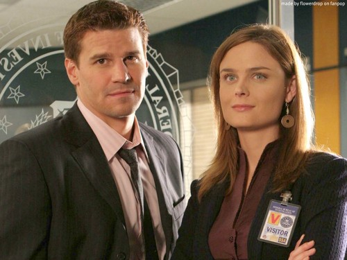Temperance Brennan پیپر وال containing a business suit entitled Temperance Brennan پیپر وال