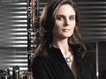 Temperance Brennan Wallpaper  - temperance-brennan wallpaper